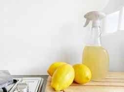citroen en ontvetten